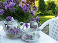 Garden Relaxation with Tea