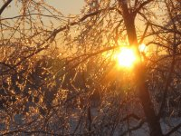 Sunrise after the ice storm NB Jan 24 2017