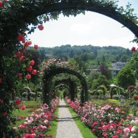 Garden Path - Northern Italy