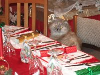 Chloe s Christmas Dinner