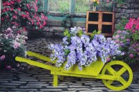Wheel Barrow Farm Cart Planter
