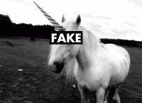 horses *.* ♥