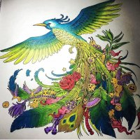 Colored Bird