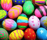 Colorful Egg 's