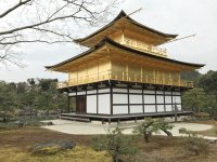 gold temple in japan