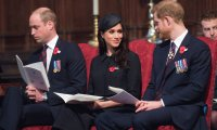Meghan,Harry y william