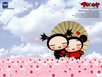 pucca6