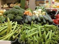 La belleza vegetal