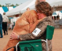 golden retriever and woman
