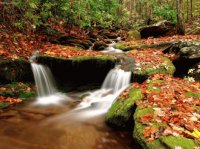 Wesser Creek In Autumn, NC
