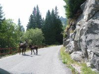 Travel to Val di Fumo