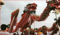 chinese walking dragon
