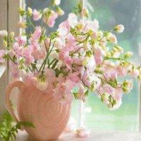 Blumen und Pflanzen