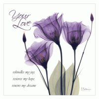 Your Love Purple Tulip
