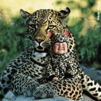 Leopardo y bb