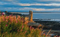 St Andrews Castle, Fife, Scotland