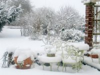 Winter Garden, Cheshire UK